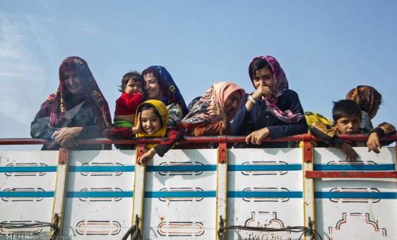 جشنواره اسب اصیل ترکمن