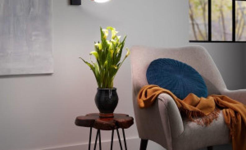 لامپ رشد گیاه چیست و چطور چراغ برای رشد گیاهان انتخاب کنیم؟