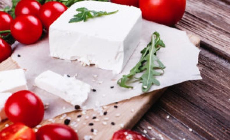 روز جهانی پنیر با تمام فوایدش