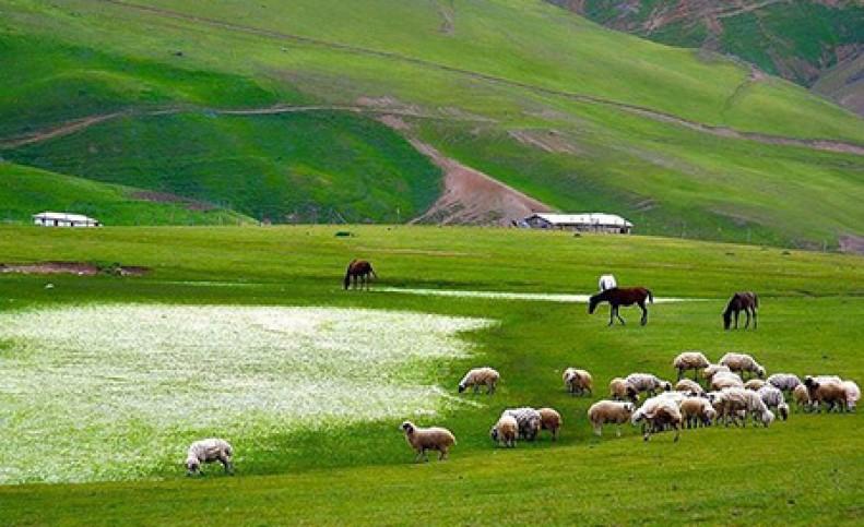 مقصدی رویایی در ایران برای سفر در خردادماه! + تصاویر