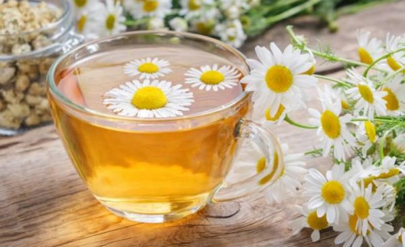 دمنوشهای گیاهی برای سلامتی و شادی