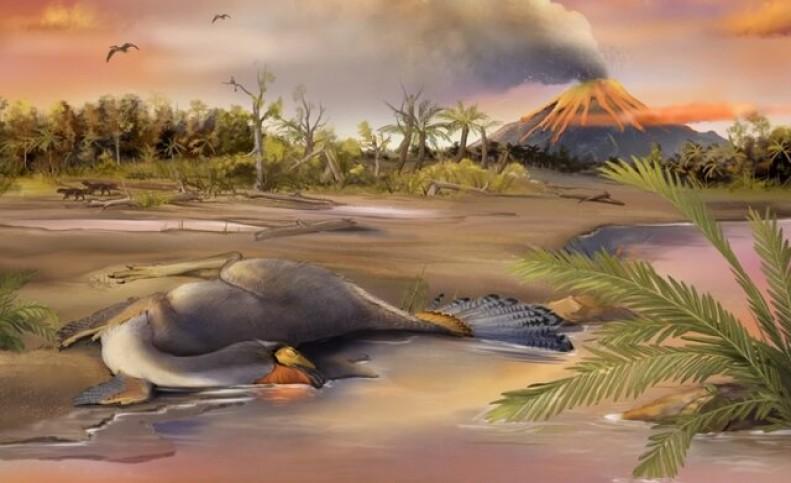 کشف اسرار دایناسورها با بررسی غضروفهای فسیلشده!