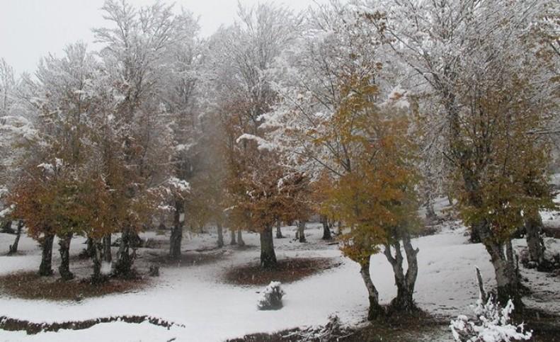 بارش نخستین برف پاییزی در خراسان شمالی