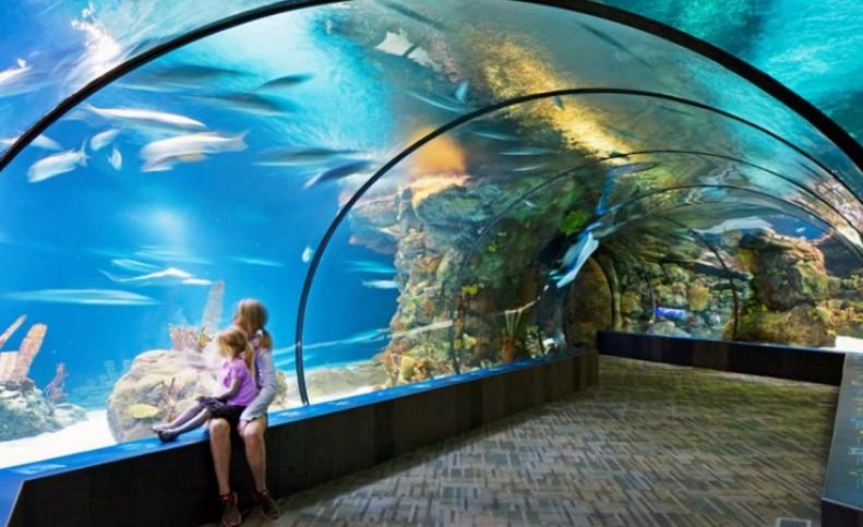 معروف ترین و بزرگ ترین باغ وحش های جهان